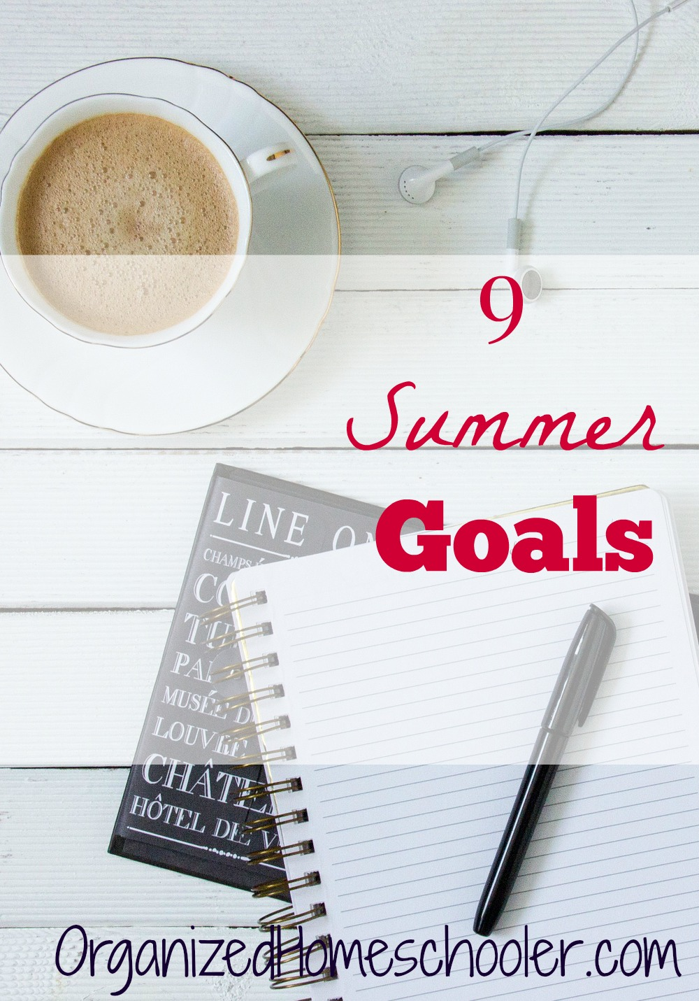 I have 9 goals this summer! I need to prepare my homeschool and my home for fall while having fun!