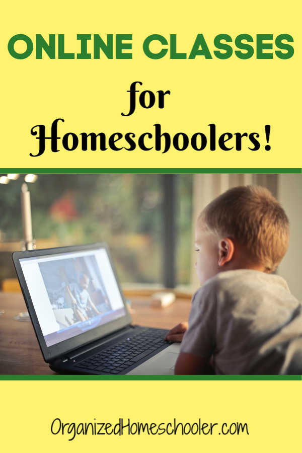 SchoolhouseTeachers.com offers online homeschool classes for the entire family! Put together a complete curriculum for kids of all ages - preschool - high school. There is even help for homeschool parents!