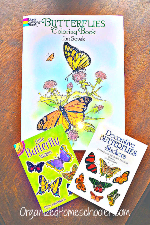 These fun educational butterfly activities are great for elementary age kids. Students can learn about the butterfly life cycle through fun hands-on learning activities and real life experience.