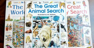 Educational Hide and Seek Books