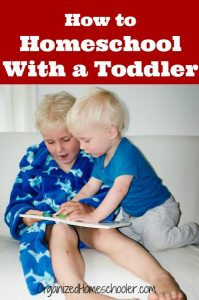 Learn how to homeschool with a toddler at home.
