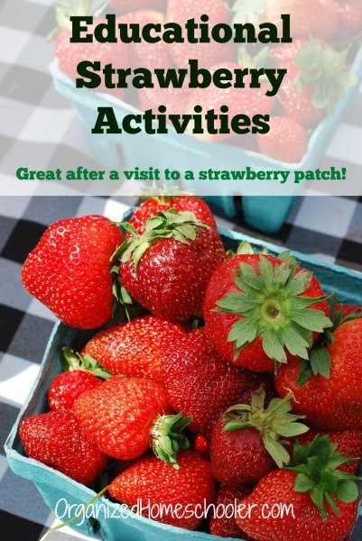 These activities are perfect after picking strawberries!. They are educational and fun.