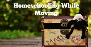 Homeschooling While Moving Tips