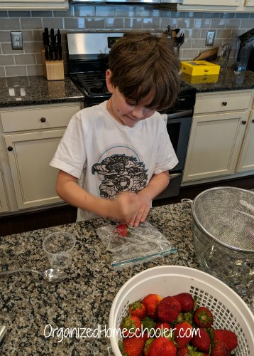 These activities are perfect after strawberry picking!. They are educational and fun.