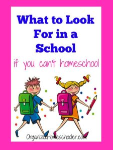 Homeschooling is not right for every family, but all parents want to provide a great education. How do you know what to look for in a school? Find out the questions to ask on a school tour from a former classroom teacher turned homeschool mom. Find out what is important and what doesn't matter. #schoolchoice