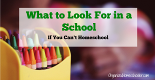 What to Look for in a School If You Can't Homeschool