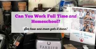 Is It Possible to be a Working Homeschool Mom?