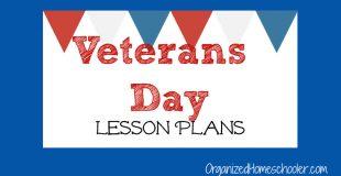 Veterans Day Lesson Plans