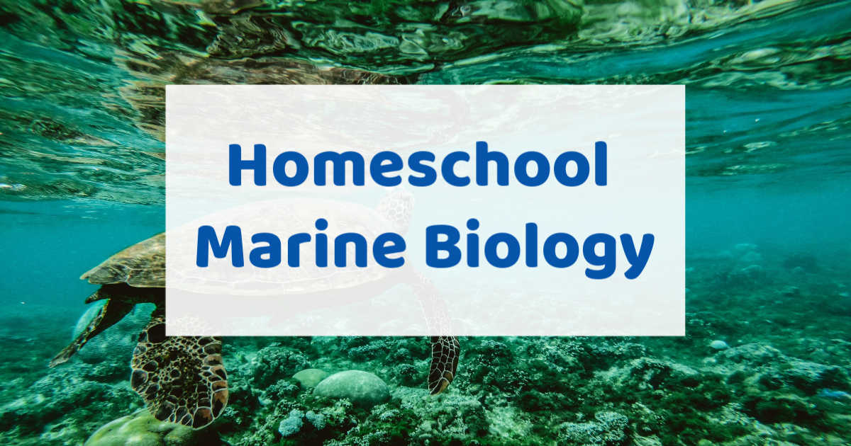 Homeschool marine biology written over background of sea turtle swimming in the ocean