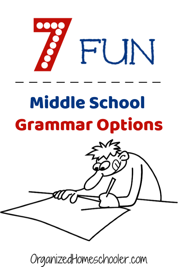 Check out these awesome affordable middle school homeschool grammar curriculum options.