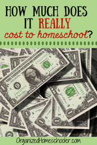 How much does it really cost to homeschool? Peek inside one real homeschool family's budget to see exactly how much money they spent on homeschooling in one year.